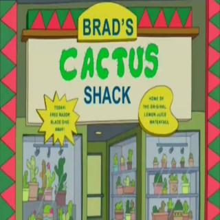 Brad's Cactus Shack