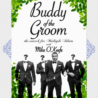 Buddy of the Groom: The Search for Multiple Idiots