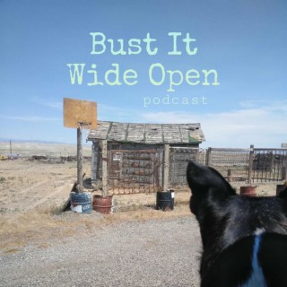 Bust it Wide Open Podcast