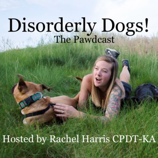 Disorderly Dogs!