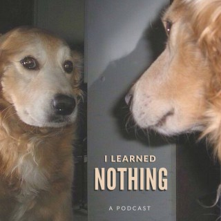 I Learned Nothing
