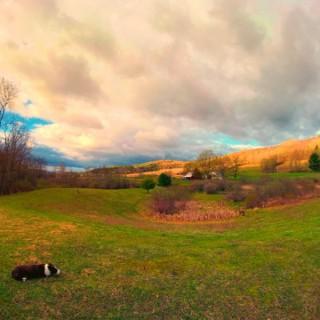 Katz and Wulf on Bedlam Farm
