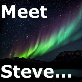 Meet Steve