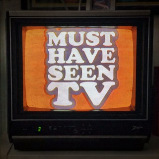 Must Have Seen TV