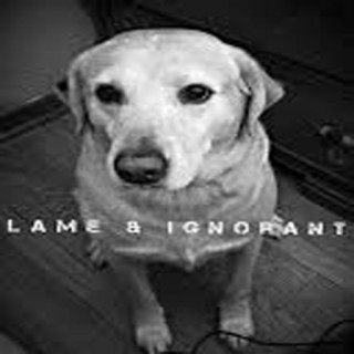 Podcast - Lame and Ignorant