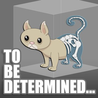 To Be Determined...