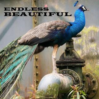 Endless Beautiful