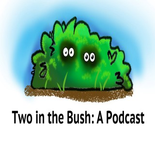 Two in The Bush: A Podcast