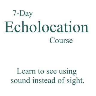 Beginner's Guide to Echolocation » Audio Lessons