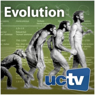 Evolution (Audio)