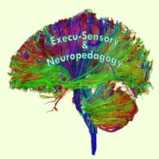 Execu-Sensory & Neuropedagogy Educational Consulting Services » Podcasts