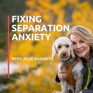 Fixing Separation Anxiety