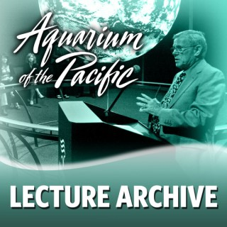 Lecture Archive 2013