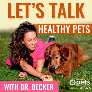 Let's Talk Healthy Pets with Dr. Becker
