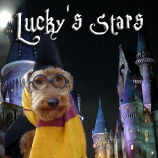 Lucky'sStars - Horoscopes for pets & pet astrology - Pets & Animals on Pet Life Radio (PetLifeRadio.com)