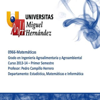 Matemáticas (umh0966) Curso 2013 - 2014