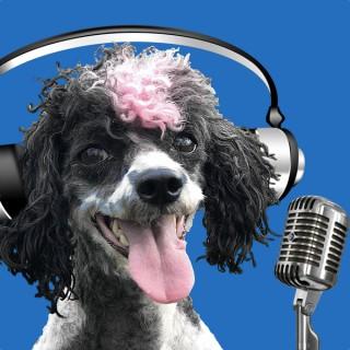 McCann Professional Dog Trainers