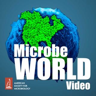 MicrobeWorld Video