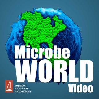 MicrobeWorld Video (audio only)