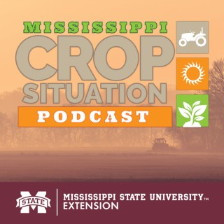 Mississippi Crop Situation Podcast