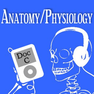 MOOC Podcast: Intro to Anatomy and Physiology with Doc C