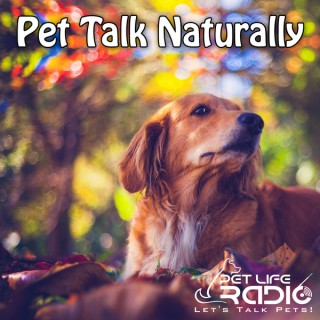 Pet Talk Naturally - Caring For Our Pets Naturally - Pets & Animals on Pet Life Radio (PetLifeRadio.com)