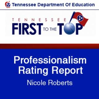 Professionalism Rating Report