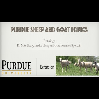 Purdue Sheep and Goat Topics