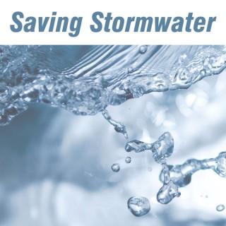 Saving Stormwater