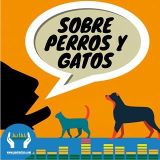 Sobre perros y gatos