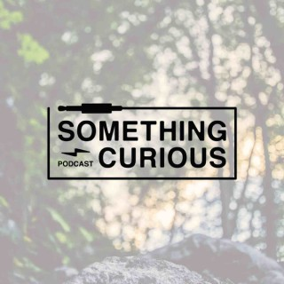 Something Curious