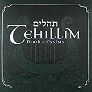 Tehillim (Psalms) Series with Rabbi Yosef Mitzrachi