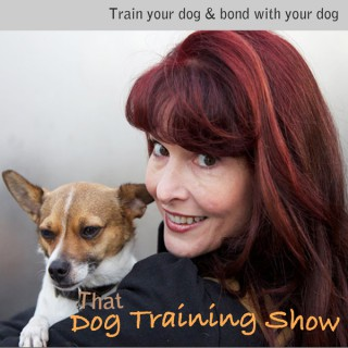 That Dog Training Show