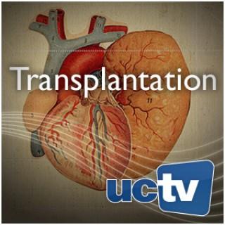 Transplantation (Audio)