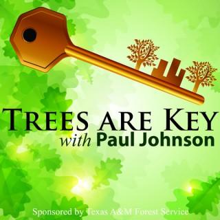 Trees Are Key