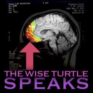 TWTSPodcast – Turil