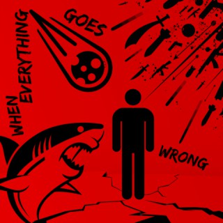 When Everything Goes Wrong: A show about safety, security, terrorism, counterterrorism, hospital security, church security, r
