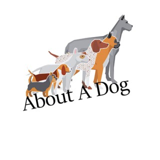 About A Dog