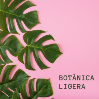 Botánica Ligera