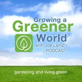 Growing A Greener World with Joe Lamp'l