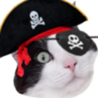 THL Pirate Radio