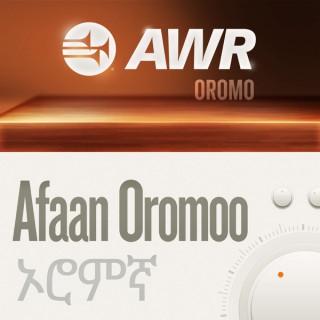 AWR Oromo / Afaan Oromoo / Oromiffa / ????