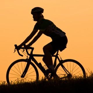 Bicycle Talk
