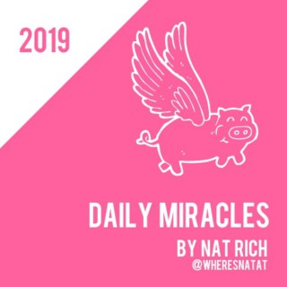 Daily Miracles by Nat Rich