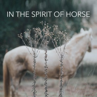 In the Spirit of Horse
