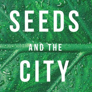 Seeds and the City
