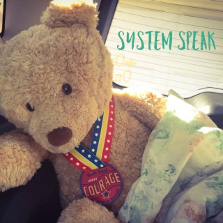 System Speak: Dissociative Identity Disorder ( Multiple Personality Disorder )