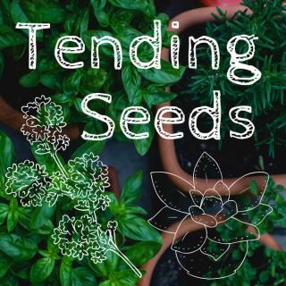 Tending Seeds: Adventures in Homesteading and Herbalism