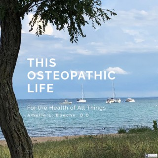 This Osteopathic Life