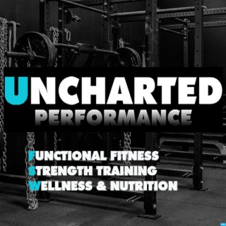 Uncharted Performance